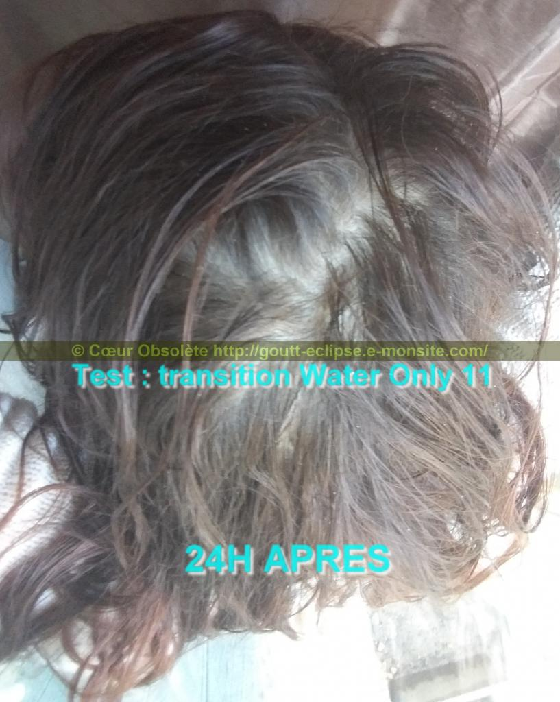 11 Fév 2018 Test Water Only Transition lavage N°11 photo 24H APRES 39