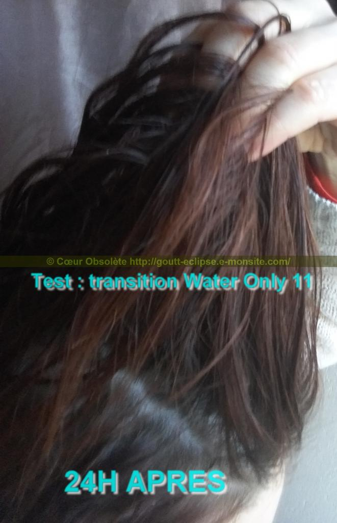 11 Fév 2018 Test Water Only Transition lavage N°11 photo 24H APRES 42