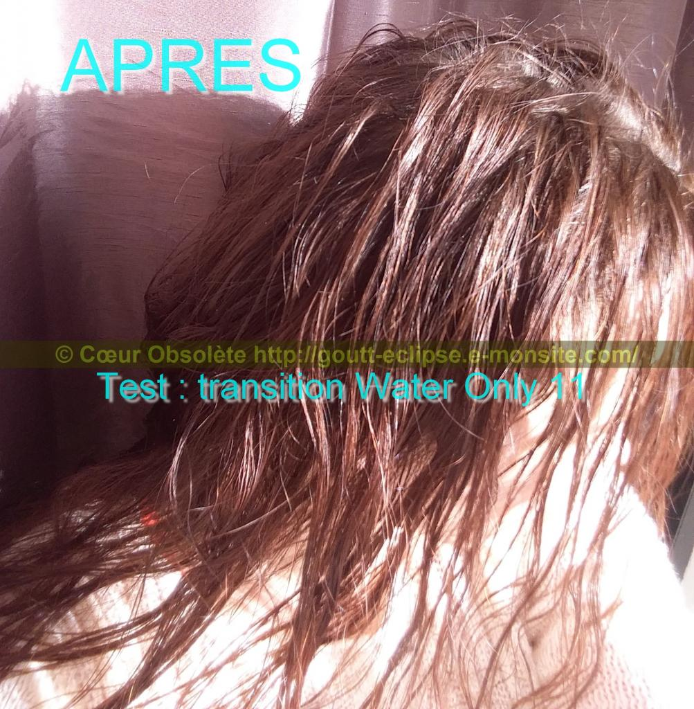 11 Fév 2018 Test Water Only Transition lavage N°11 photo APRES 25