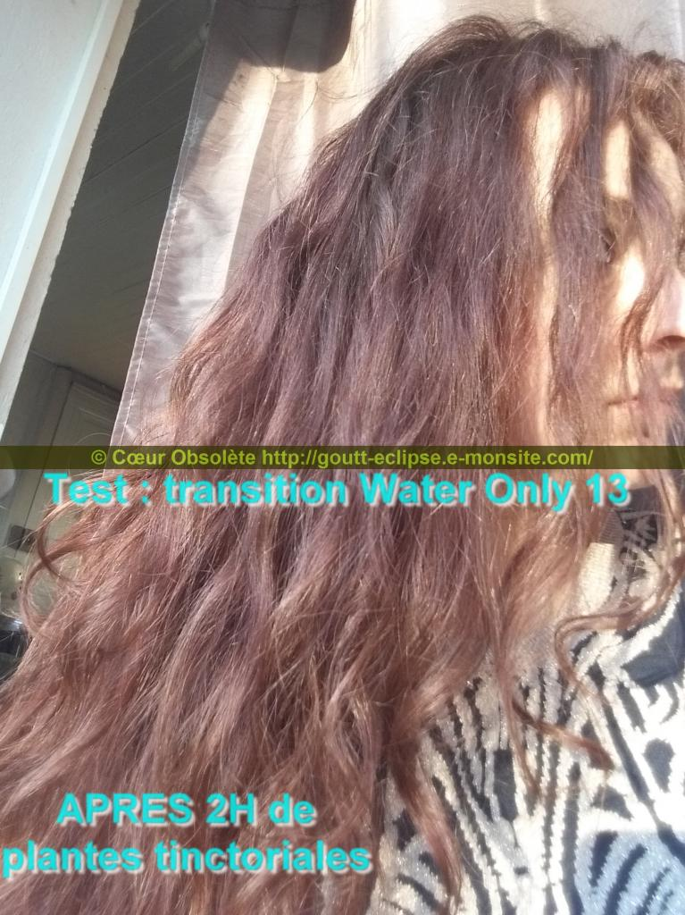 25 Fév 2018 Test Water Only Transition lavage N°13 photo APRES COLORATION 16