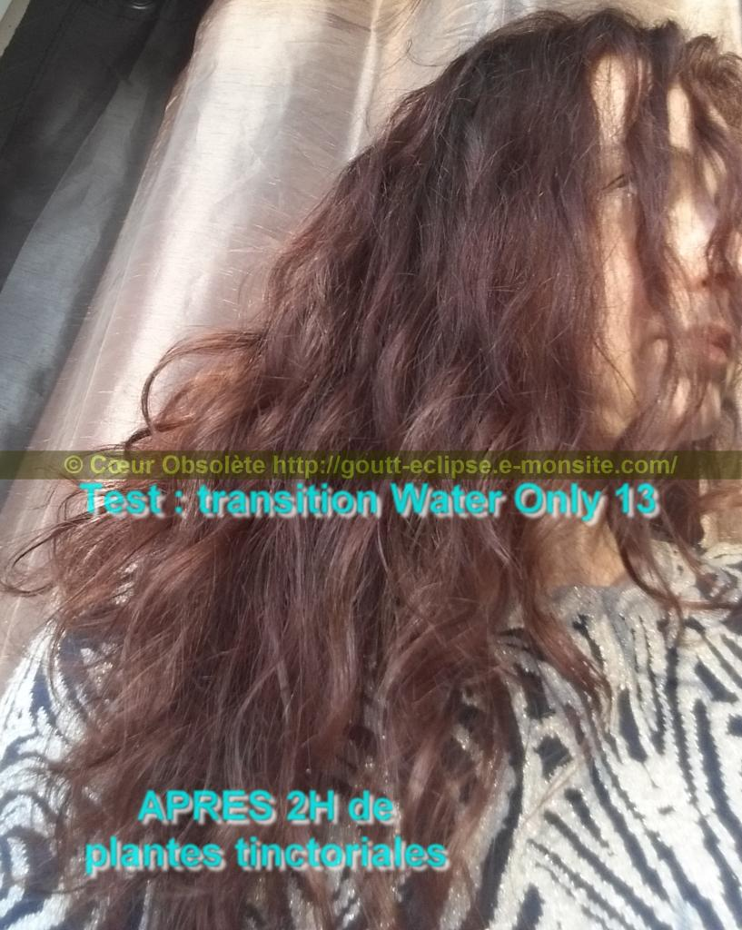 25 Fév 2018 Test Water Only Transition lavage N°13 photo APRES COLORATION 17