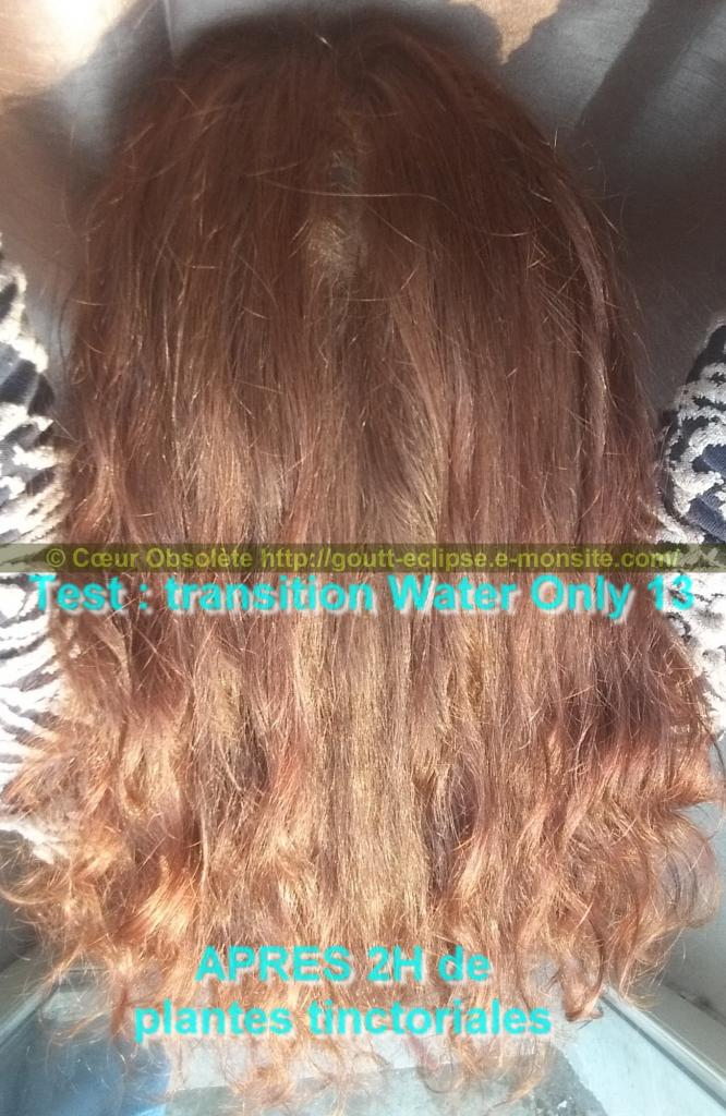 25 Fév 2018 Test Water Only Transition lavage N°13 photo APRES COLORATION 18