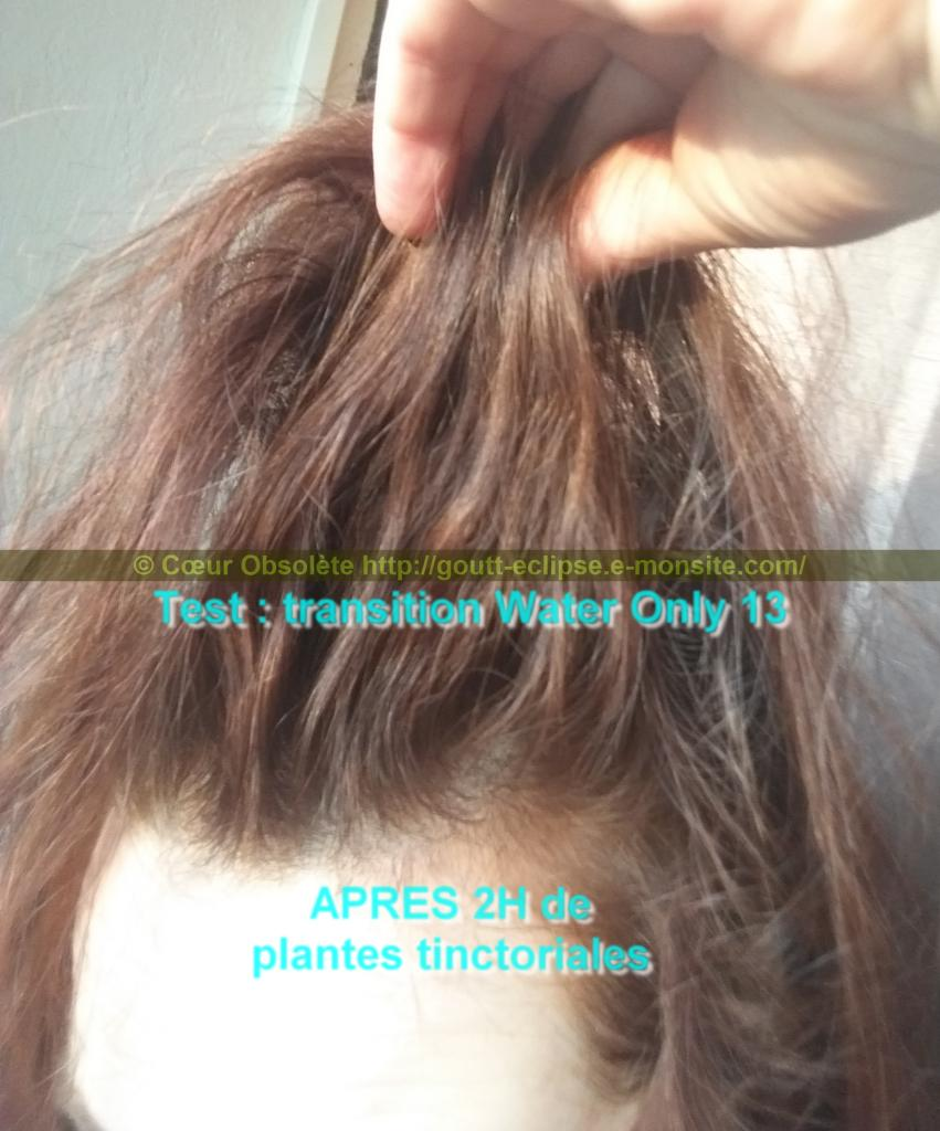25 Fév 2018 Test Water Only Transition lavage N°13 photo APRES COLORATION 19