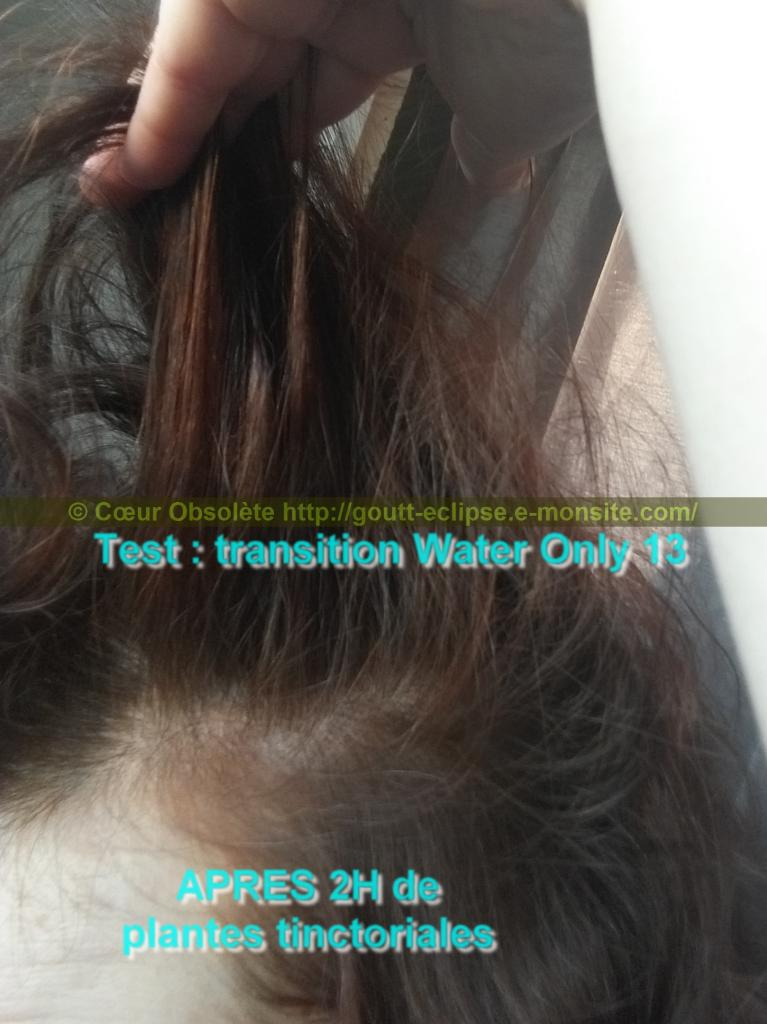 25 Fév 2018 Test Water Only Transition lavage N°13 photo APRES COLORATION 20